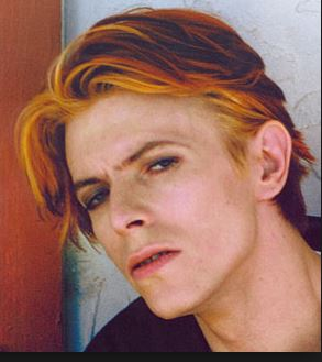 I know at least 10 people reading this were wondering when David Bowie would show up...Photo Credit: Google image search